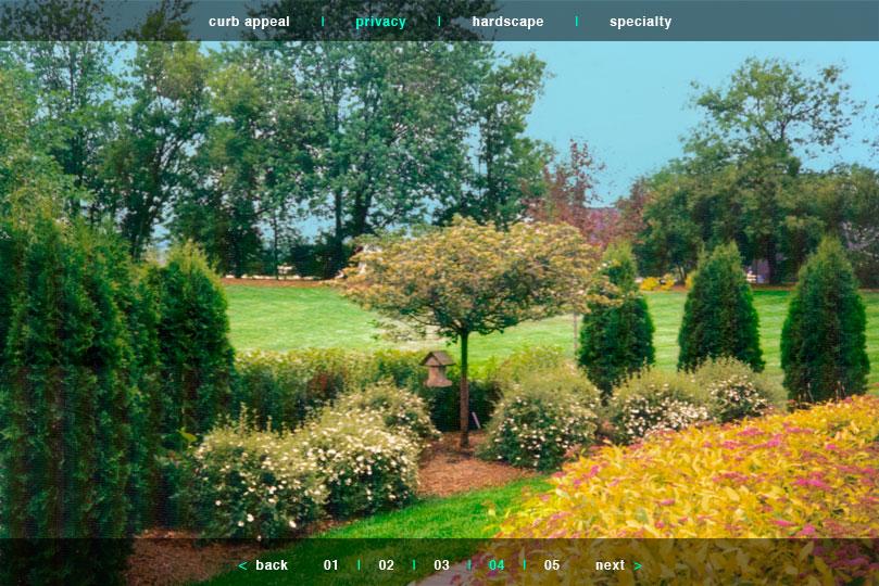 PRIVACY Photo Portfolio 04 | Joan L. Lila . Landscape Designer Of 25 Years | A.A.S. Ornamental ...
